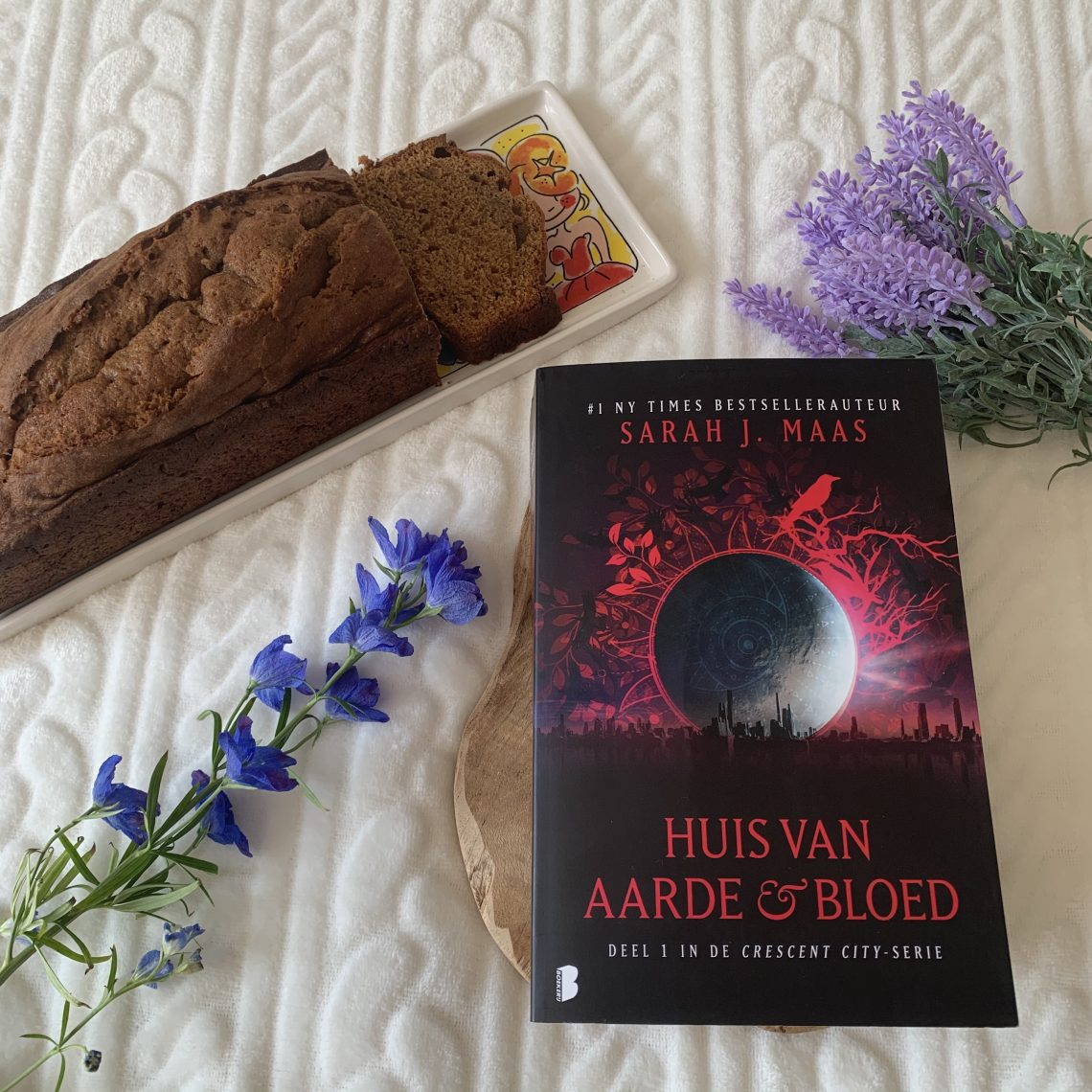 Boek Huis van aarde & bloed van Sarah J. Maas