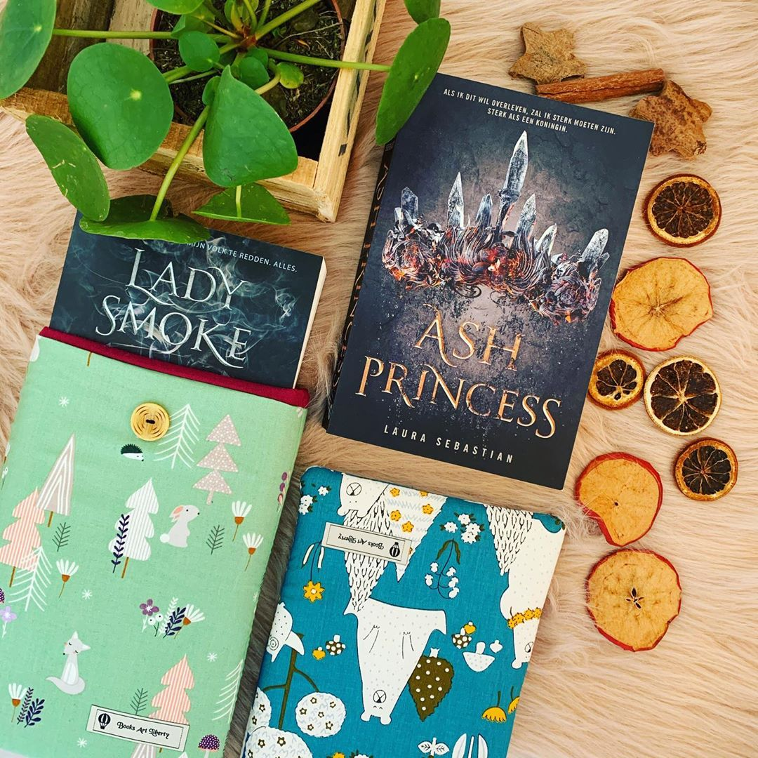 Book Ash Princess by Laura Sebastian in booksleeves
